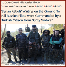 20151127 GLADIO Wolf Kills Russian Pilot