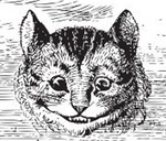 Cheshire Cat Smiling (head-on)
